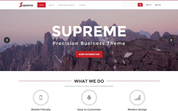Business Templates - Supreme - <p>Precision Business Theme</p>