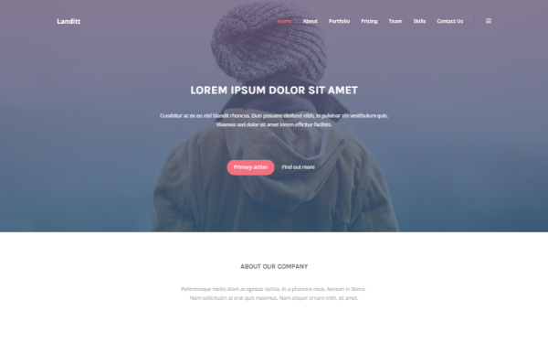 DOWNLOAD - Landitt - Clean Landing Page Template