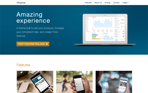 Influence - Responsive Business Theme - Live Preview - WrapBootstrap