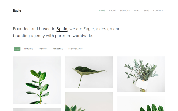 DOWNLOAD - Eagle - Responsive Minimal Template