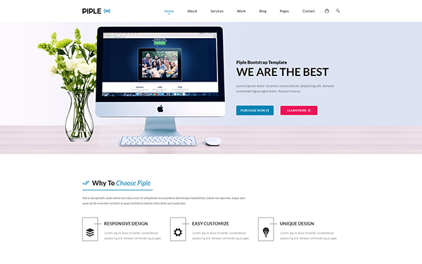 Piple - Responsive Bootstrap 4 Theme