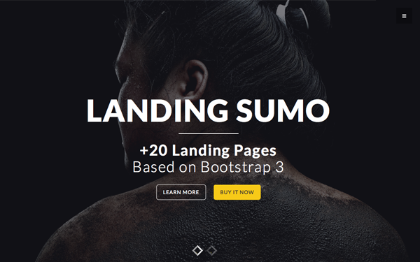 Landing Sumo - +20 Themes in One