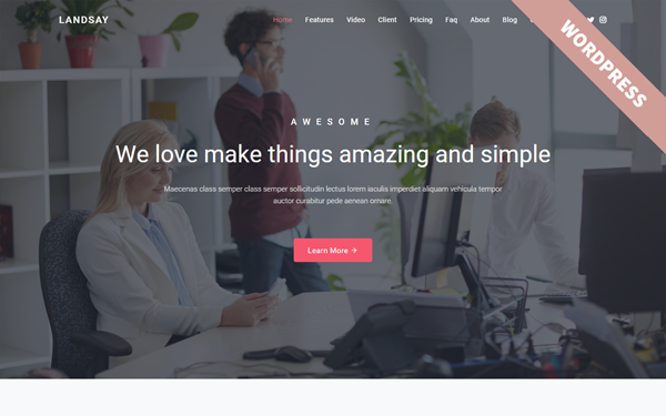 DOWNLOAD - Landsay - WordPress Landing Theme