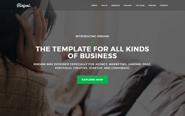 DOWNLOAD - Rinjani - Multi-Purpose One Page Theme
