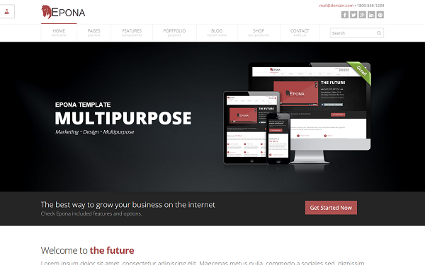 Epona - Responsive Website Template