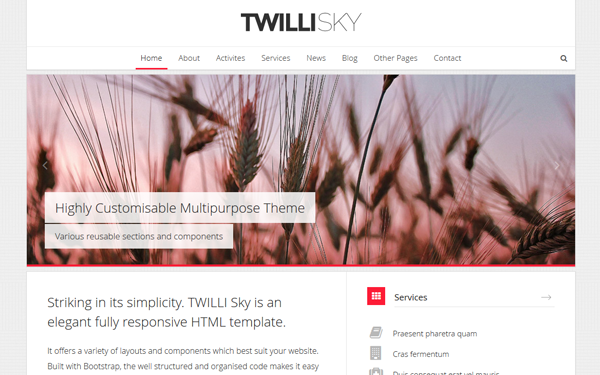 TWILLI SKY - Responsive HTML Template - Live Preview - WrapBootstrap
