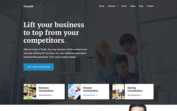DOWNLOAD - Consult - Finance & Consultation Theme
