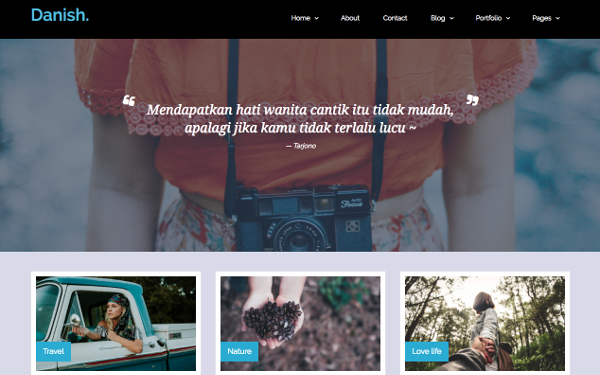 Danish portfolio wordpress theme