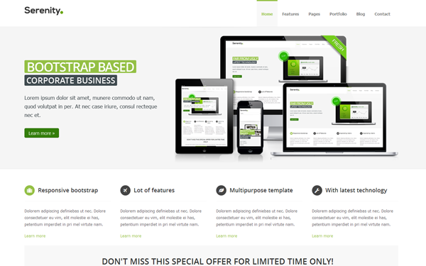 Serenity Responsive Multipurpose Theme - Live Preview - WrapBootstrap
