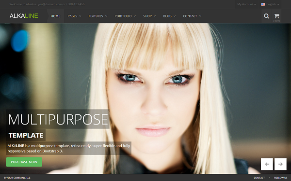 Alkaline - Multipurpose Template