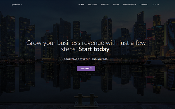 Quicksilver - Startup Landing Page - Live Preview - WrapBootstrap