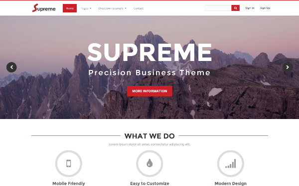 Supreme - Precision Business Theme