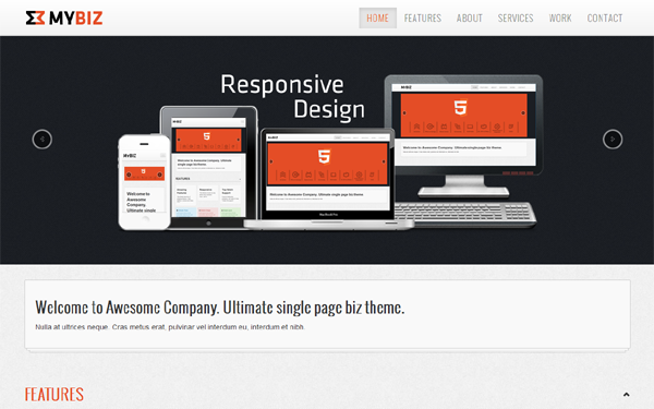 DOWNLOAD - MyBiz - Responsive Biz/Portfolio Theme