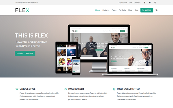Flex UltraFlexible WordPress Theme
