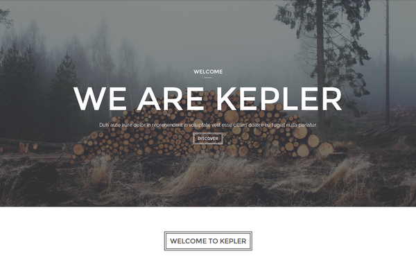 Kepler - Creative One Page Template