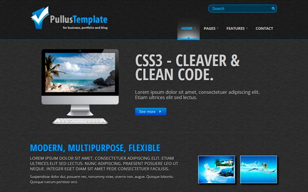 Pullus template modern flexible