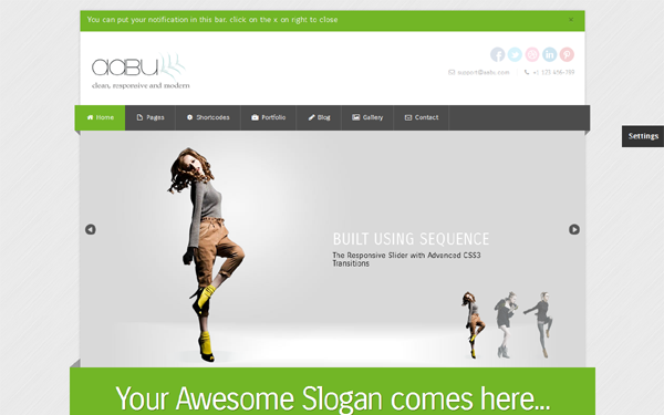 Abbu - Responsive Business Theme