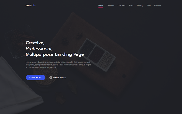 Aneria - Landing Page Template - Live Preview - WrapBootstrap