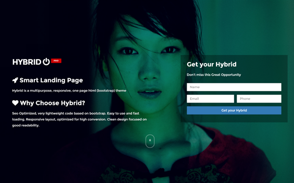 DOWNLOAD - Hybrid - Multipurpose Landing Page