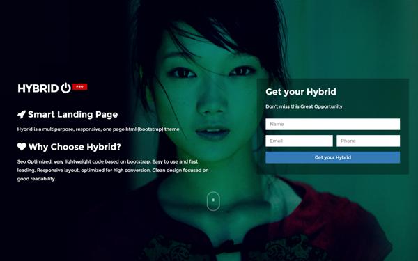 Hybrid - Multipurpose Landing Page
