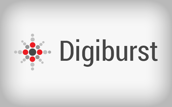 Digiburst Logo Template