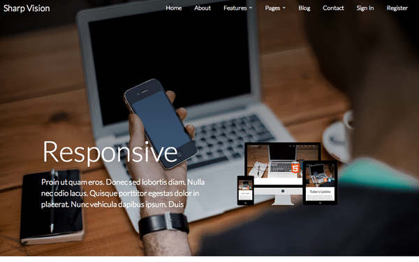 Sharp Vision + AngularJS Business Theme