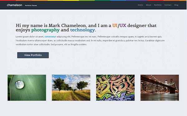Chameleon - Slick Portfolio Template | Portfolios & Resumes