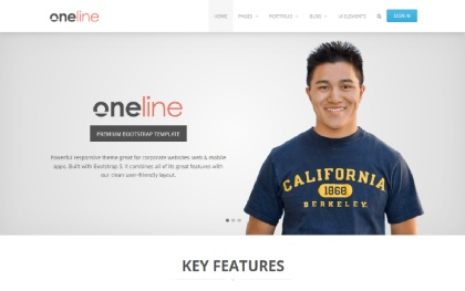 Oneline - Powerful Responsive Theme