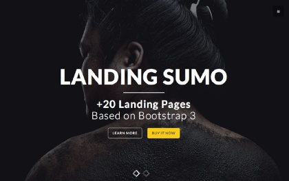Landing Page Temlates - +20 Themes in One