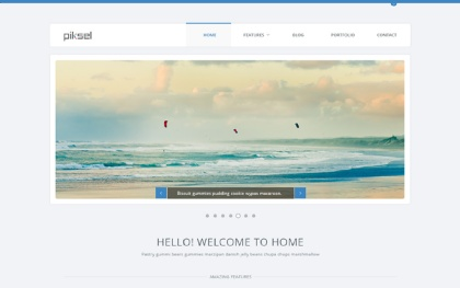 Piksel - Multipurpose HTML Template