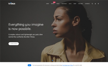 Tribus - Multipurpose Template