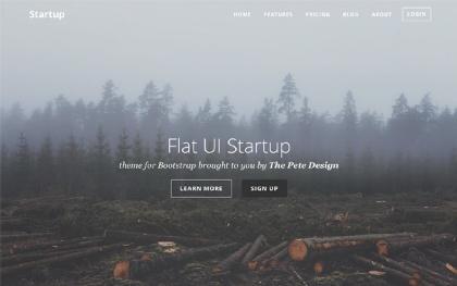 Flat UI Startup