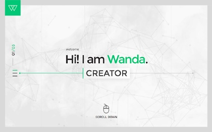 WANDA - The Unique Minimal Portfolio