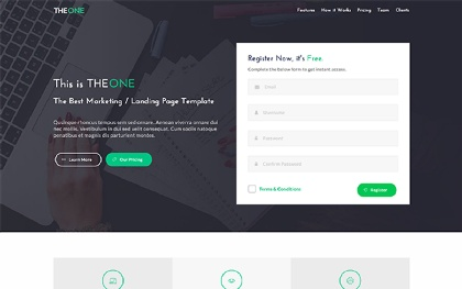TheOne - Landing Page Template
