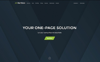 Bamboo - Smooth One Page Theme