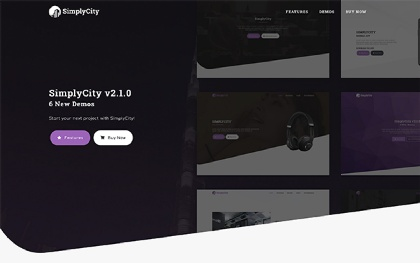 SimplyCity - Multipurpose One Page Theme