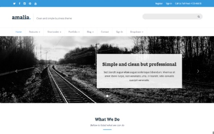 Amalia - Clean and Simple Business Theme