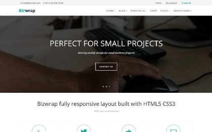 Bizwrap - Responsive WordPress Theme