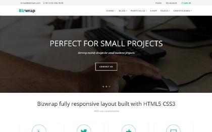 Bizwrap - WordPress Business Theme
