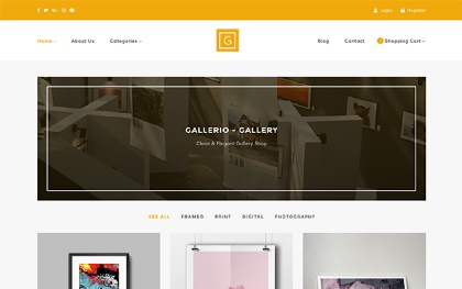 Gallerio - Gallery & Shop Template