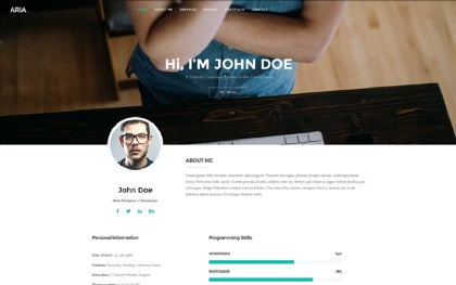 Aria - Personal Resume and Portfolio