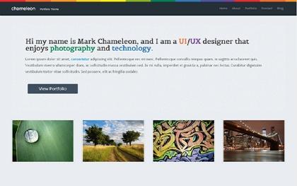 Chameleon - Slick Portfolio Template